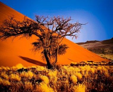 DESTINAZIONE NAMIBIA CONSIGLIATO